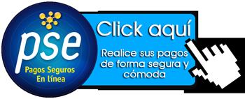 Medio de pago en linea en Tecnologia Caqueta - Pago-Online PSE